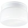 Progress Lighting, 2-light Flushmount, P3518-30