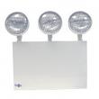 Encore Lighting 12EB36-3-NY NEMA EX SERIES